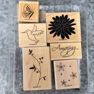 Stampin Up Pretty Amazing Rubber Stamp